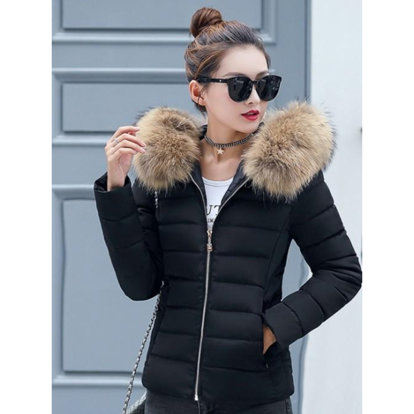 Womens  Hooded Slim Fit Winter Zip Up Short Coat in Black