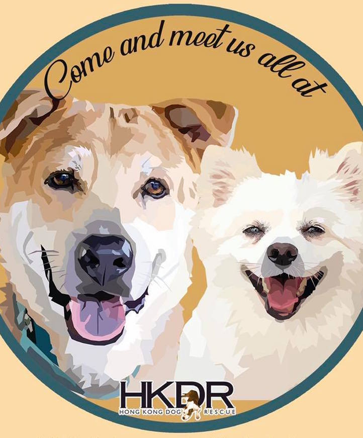 Charity Spotlight - Hong Kong Dog Rescue