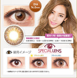 Berry Cessy Brown Contact Lenses