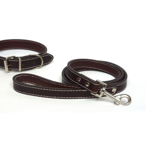 The Paws Brown Leather Lead