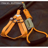 Touchdog Mountain Harness & Leads (S,M,L)