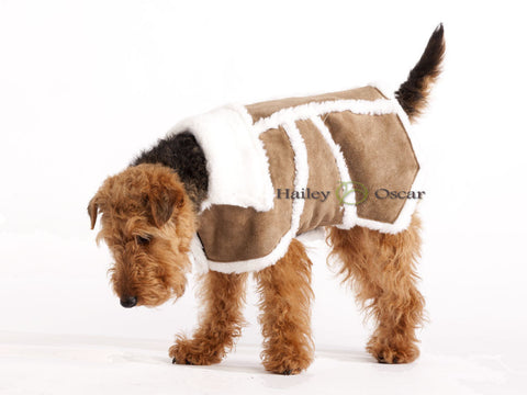 Luxury Dog Coat Sherpa Suede Leather Dog Coat - Brown / Black