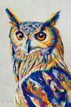 Great Horned Owl Original Pastel
