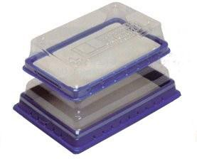 Dissection Pan with Cutting Pad and Lid, Plastic, Reusable (#5420, 5421)
