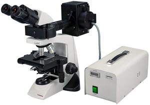 Labomed LX400 Fluorescence Microscope (#9126009, 9126010)