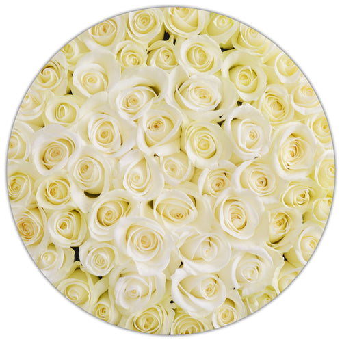 Medium - White Roses - Grey Box - The Million Roses Budapest