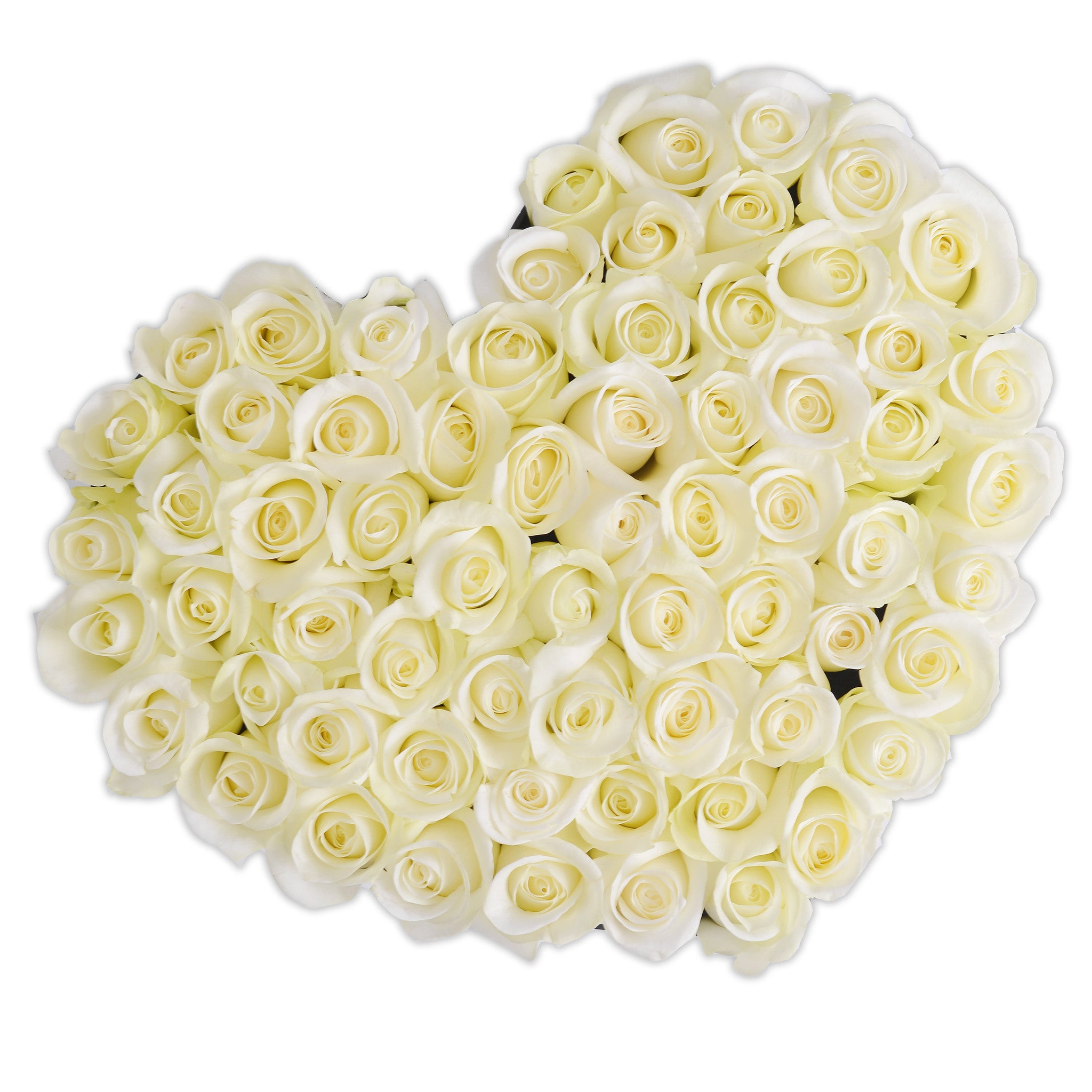 Heart - White Roses - Black Box - The Million Roses Budapest