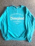 Return to Disneyland (Fruit of the Loom brand) unisex sweatshirt