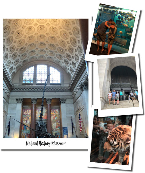 NATURAL HISTORY MUSEUM NEW YORK - THINGS TO DO WITH KIDS
