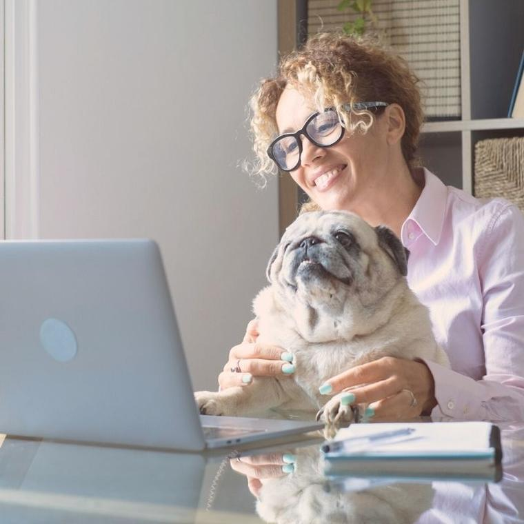 we bring it to you! Kids and Adult parties available