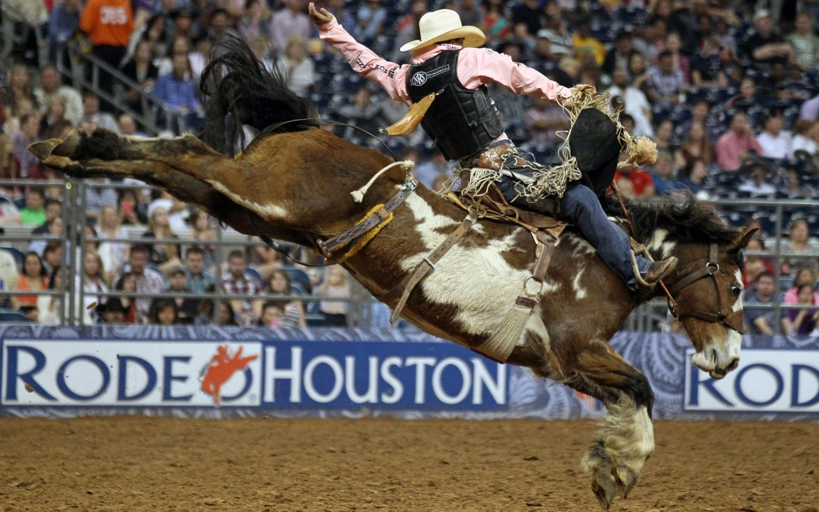 La SMP presente en el Houston Livestock Show and Rodeo