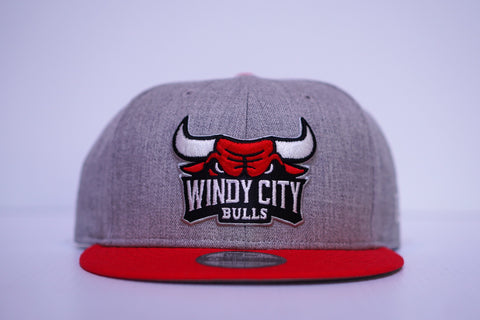 Gray/Red Primary Logo Hat