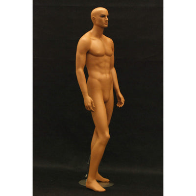 Mannequin Mall Male Realistic Mannequin MM-HAM25 For Fashion Stores and Retail Shops