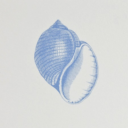 Common Shell Notepad