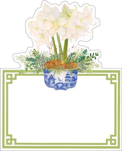 Potted Amaryllis Place Cards, Set of 8