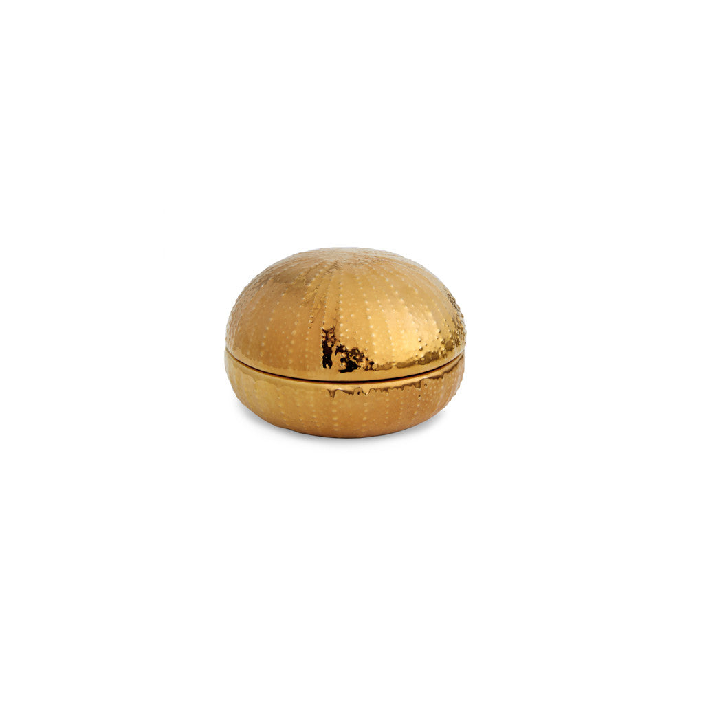 AERIN Gold Sea Urchin Box, Small