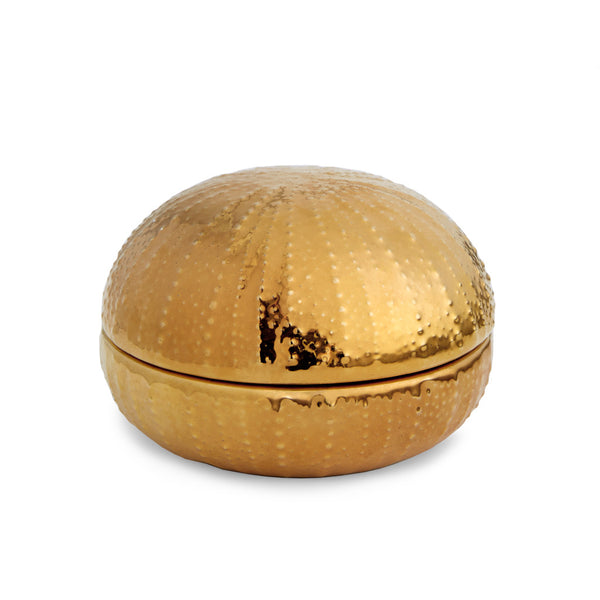 AERIN Gold Sea Urchin Box, Large