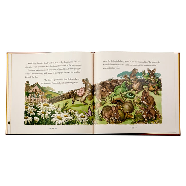 Peter Rabbit Leather book
