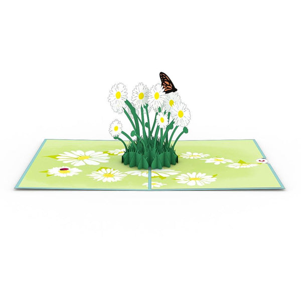 Pop Up Card, Daisy Patch