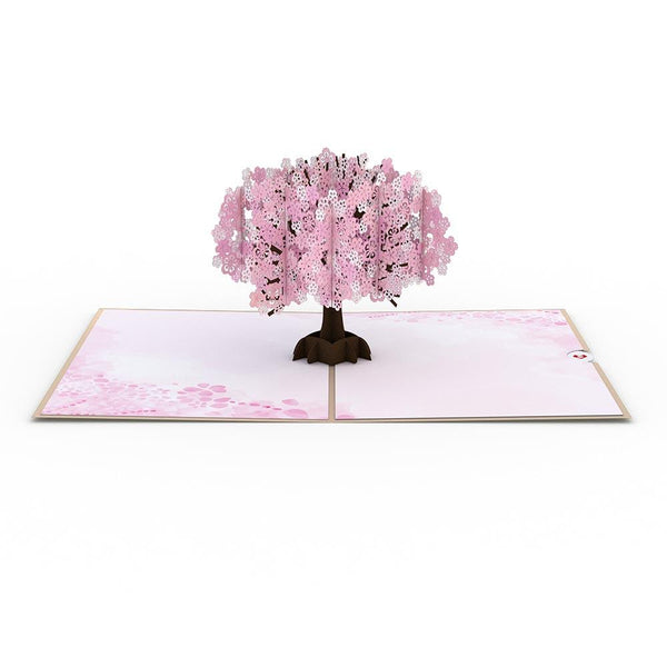 Pop Up Card, Cherry Blossom