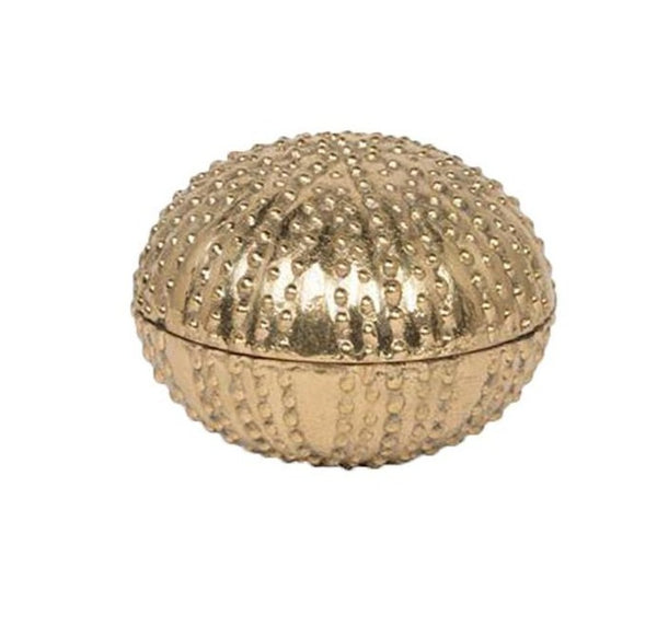 Obelia Sea Urchin Gold Brass, Large