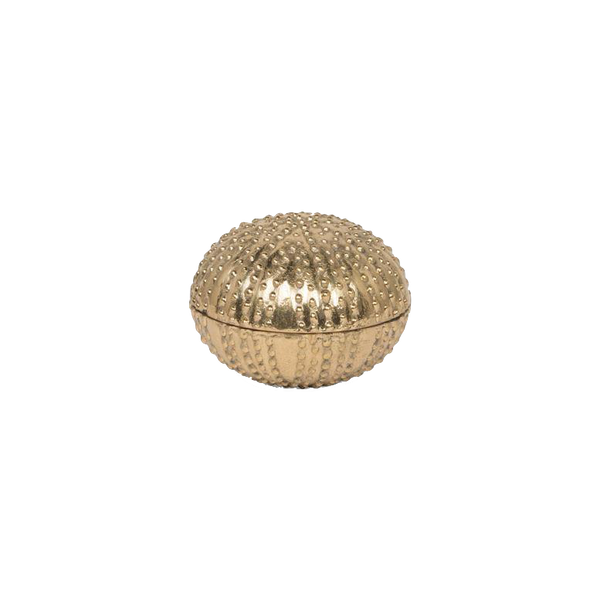 Obelia Sea Urchin Gold Brass Small