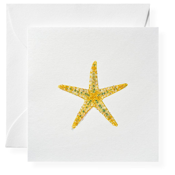 Starfish Gift Enclosures, Set of 6