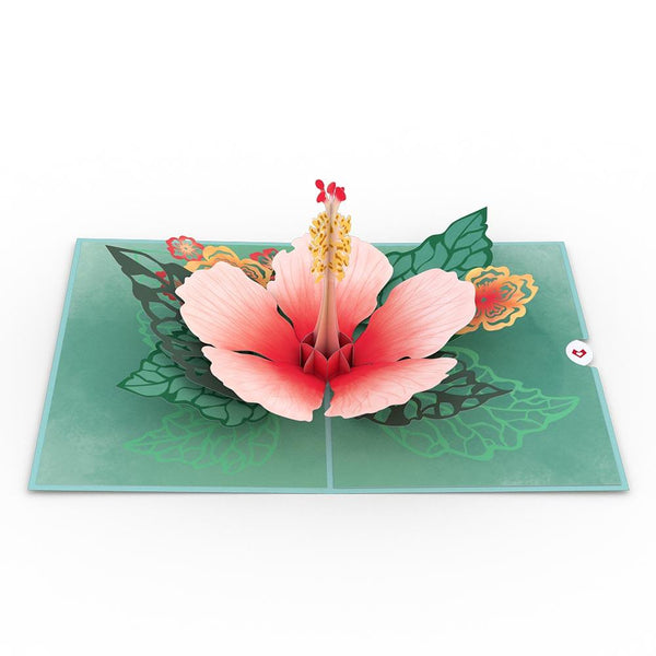 Pop Up Card, Hibiscus Bloom