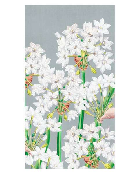 Paperwhites Silver, Guest Towels