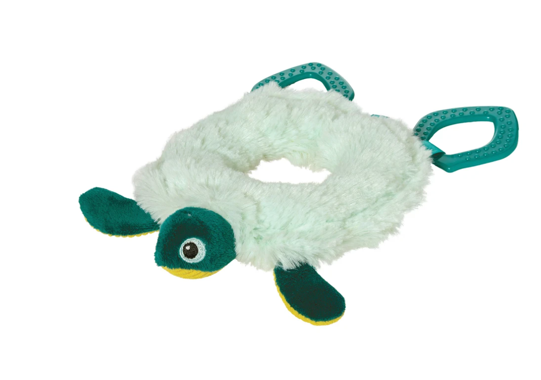 Theo Turtle Circle Toy