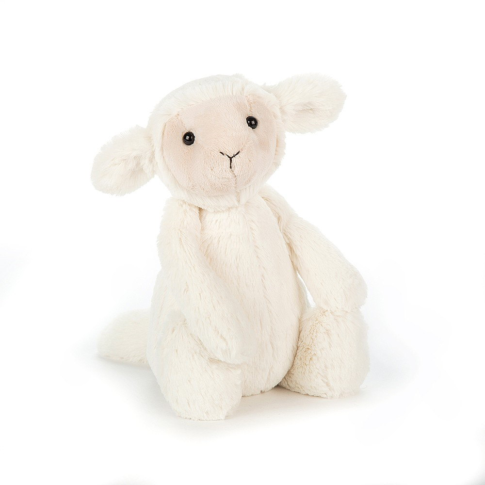 Bashful Lamb, Medium