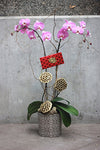 Happy Chinese New Year Orchid Planter