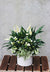 White Elegance Indoor Planter