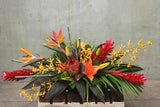 The Tropics Design Arrangement