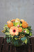 Peach Perfection Vase Arrangement