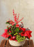 Christmas Treasure Indoor Planter