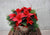 Festive Red Poinsettia Indoor Planter