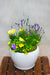 Tweety Bird Outdoor Planter