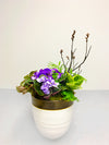 Magestic Mauve Indoor Planter