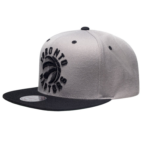 Toronto Raptors OVO Mitchell & Ness Men's Alternate Primary Log 2-Tone Snapback