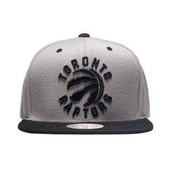 Toronto Raptors OVO Mitchell & Ness Men's Alternate Primary Log 2-Tone Snapback - shop.realsports - 1