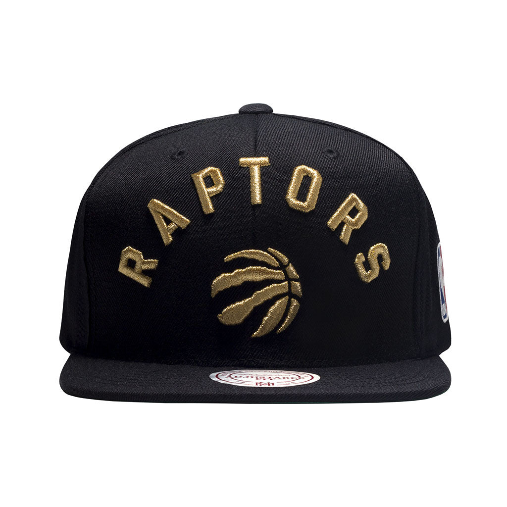 Toronto Raptors OVO Mitchell & Ness Men