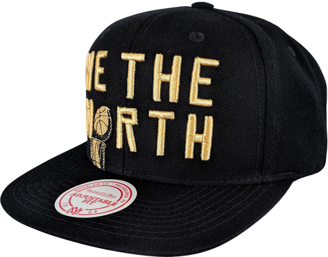 Raptors Mitchell & Ness 2019 NBA Champs WTN Trophy Snapback