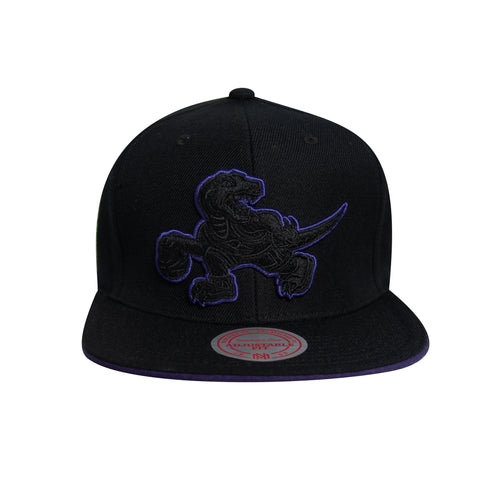 Raptors Mitchell & Ness Men's HWC Pop Snapback