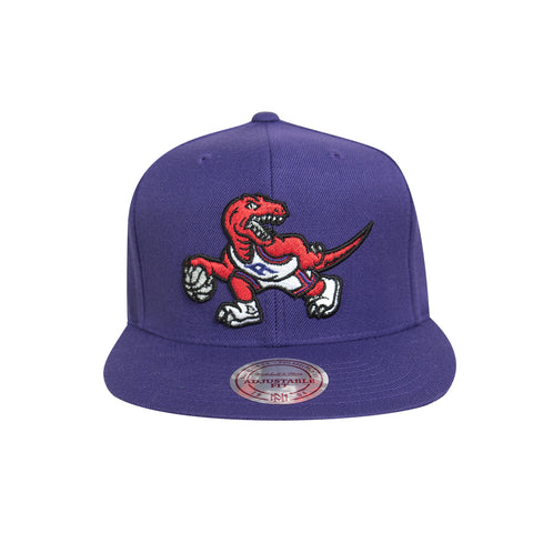 Raptors Mitchell & Ness Men's HWC Ground XL Dino Snapback