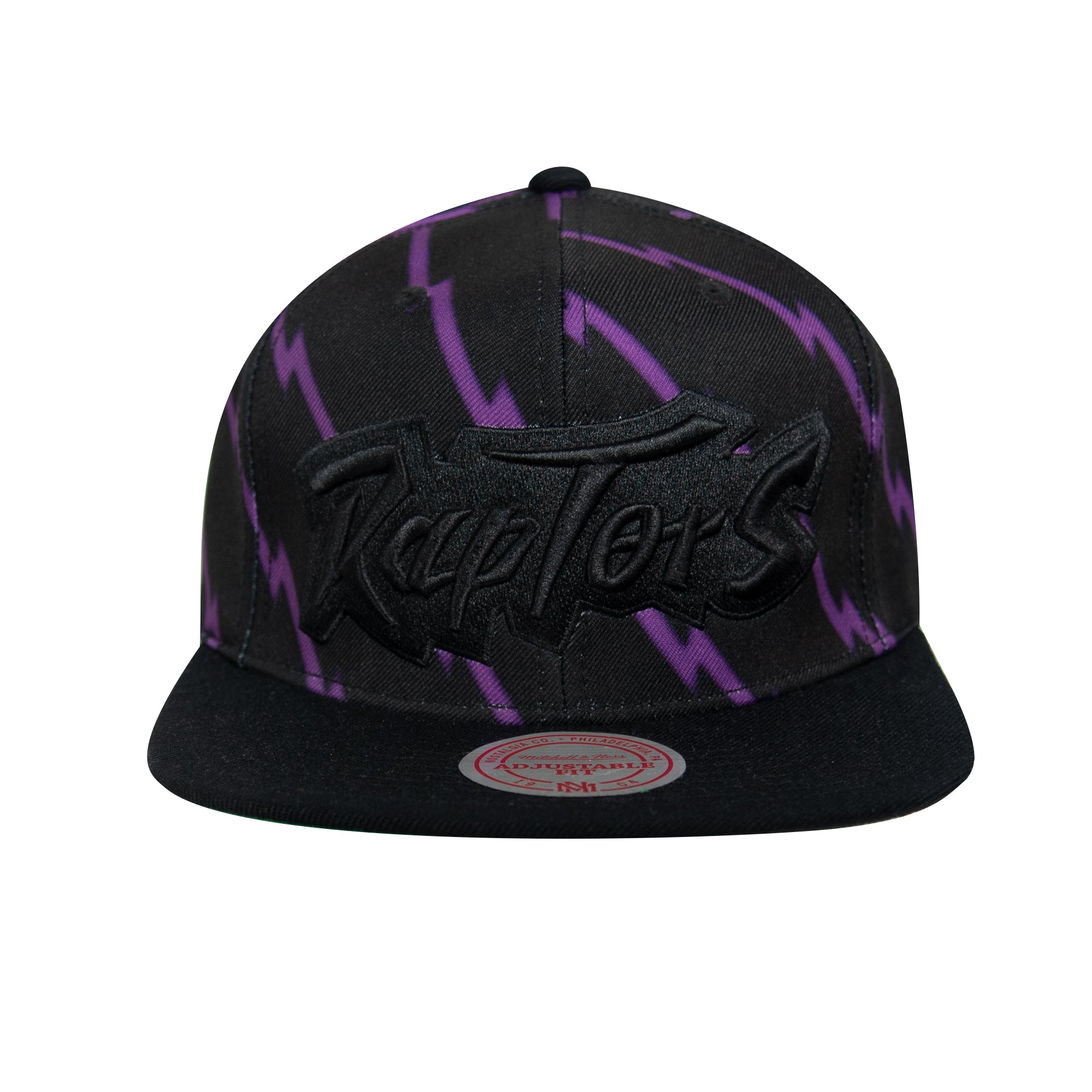 Raptors Mitchell & Ness Men's HWC Top Dog Striped Snapback