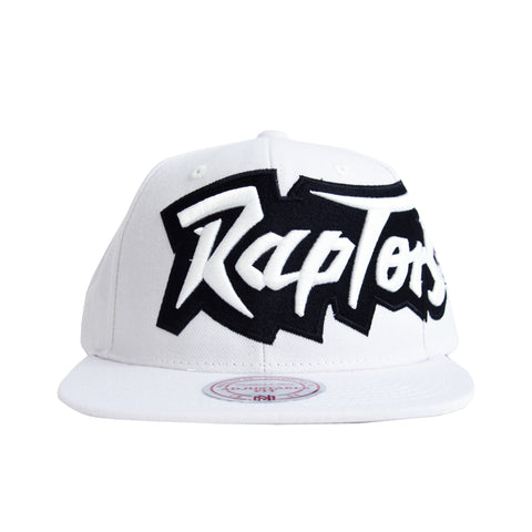 Raptors Mitchell & Ness Wordmark Dad Hat