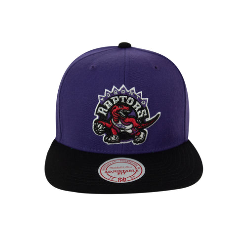 Raptors Mitchell & Ness HWC Two-Tone XL Logo Snapback