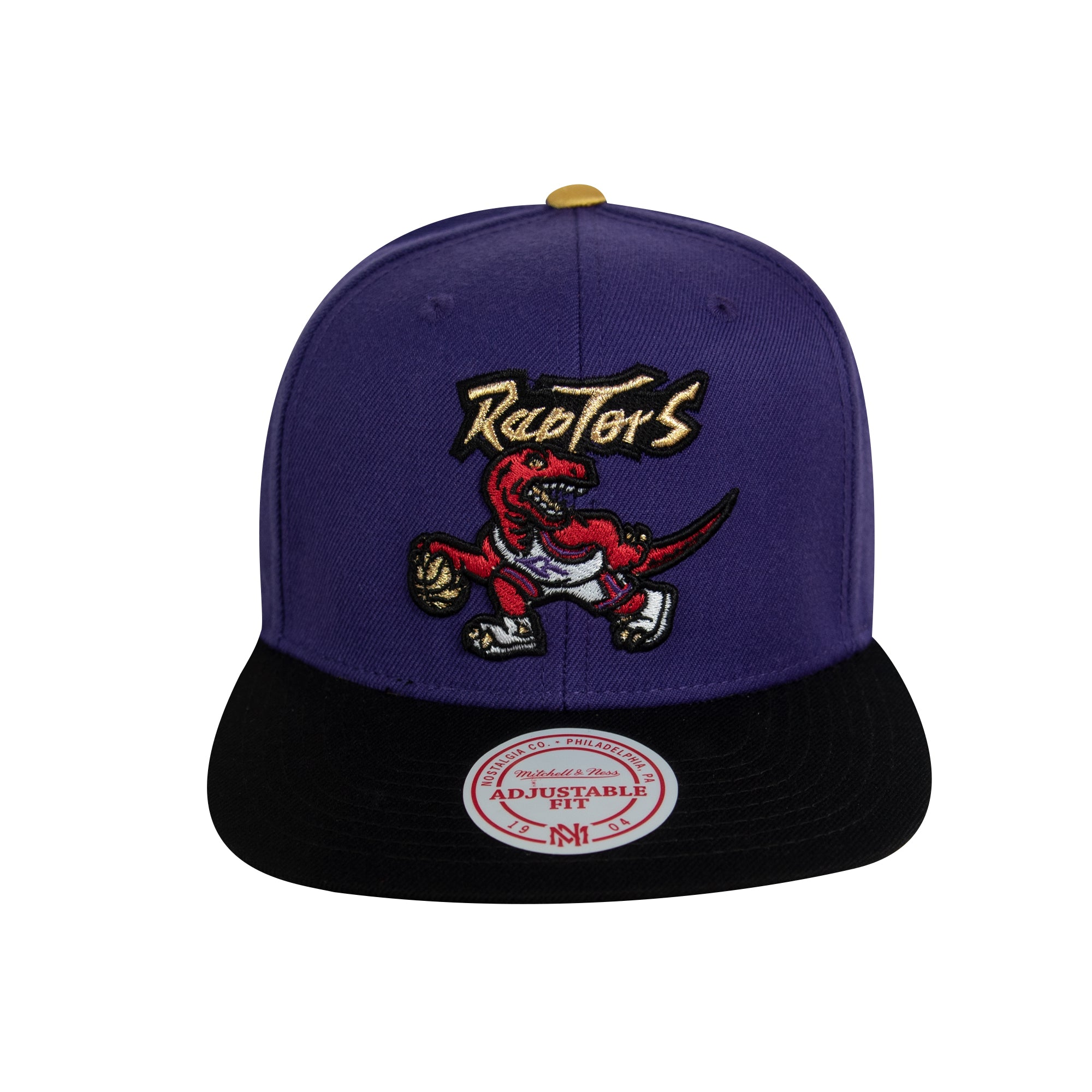 Raptors Mitchell & Ness Men's HWC Two-Tone Gold Tip Snapback - Purple