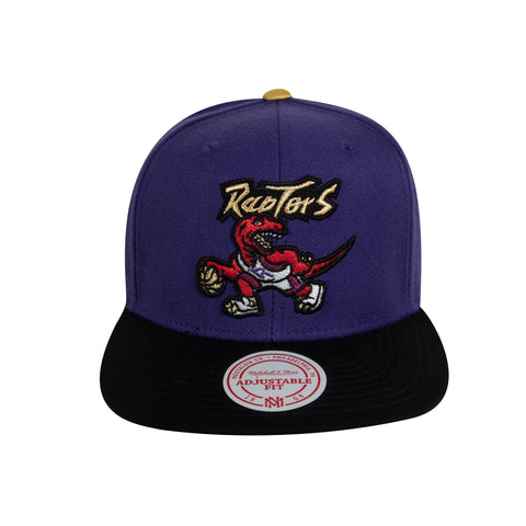 Raptors Mitchell & Ness HWC Two-Tone Gold Tip Snapback - Purple